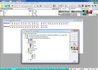 pobierz program Binary Browser