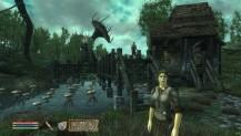 pobierz program The Elder Srolls IV: Oblivion - pełne spolszczenie