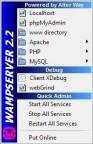 pobierz program WampServer