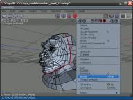 pobierz program Wings 3D