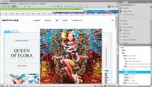 pobierz program Adobe Dreamweaver